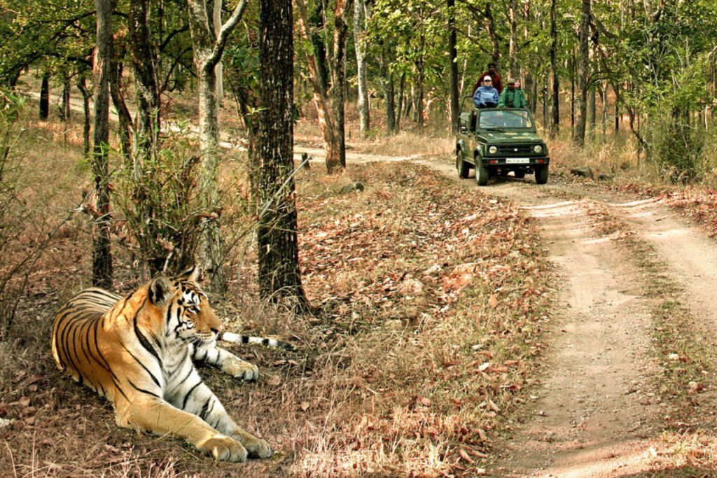 Best Places in India to visit