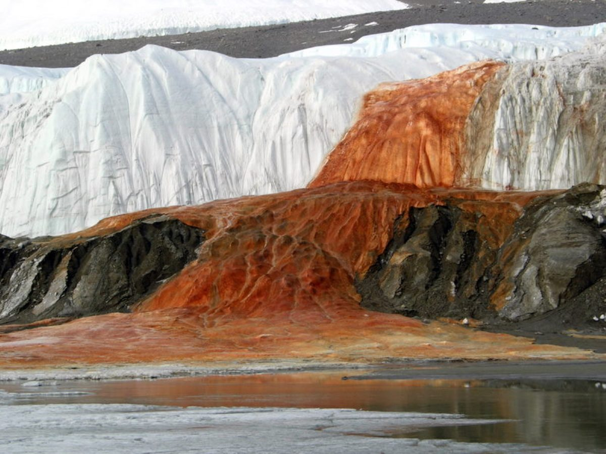 Antarctica Blood falls Mystery solved
