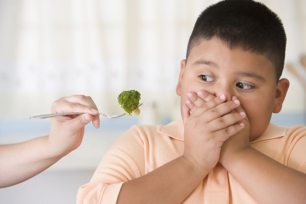 Deal Fussy Eating in Children
