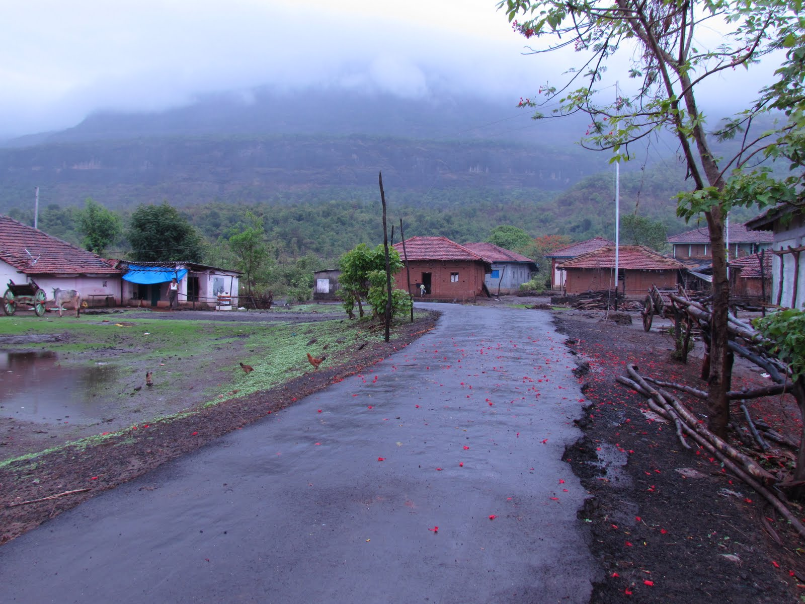 Kathewadi, Maharashtra, beauty of Indian Villages