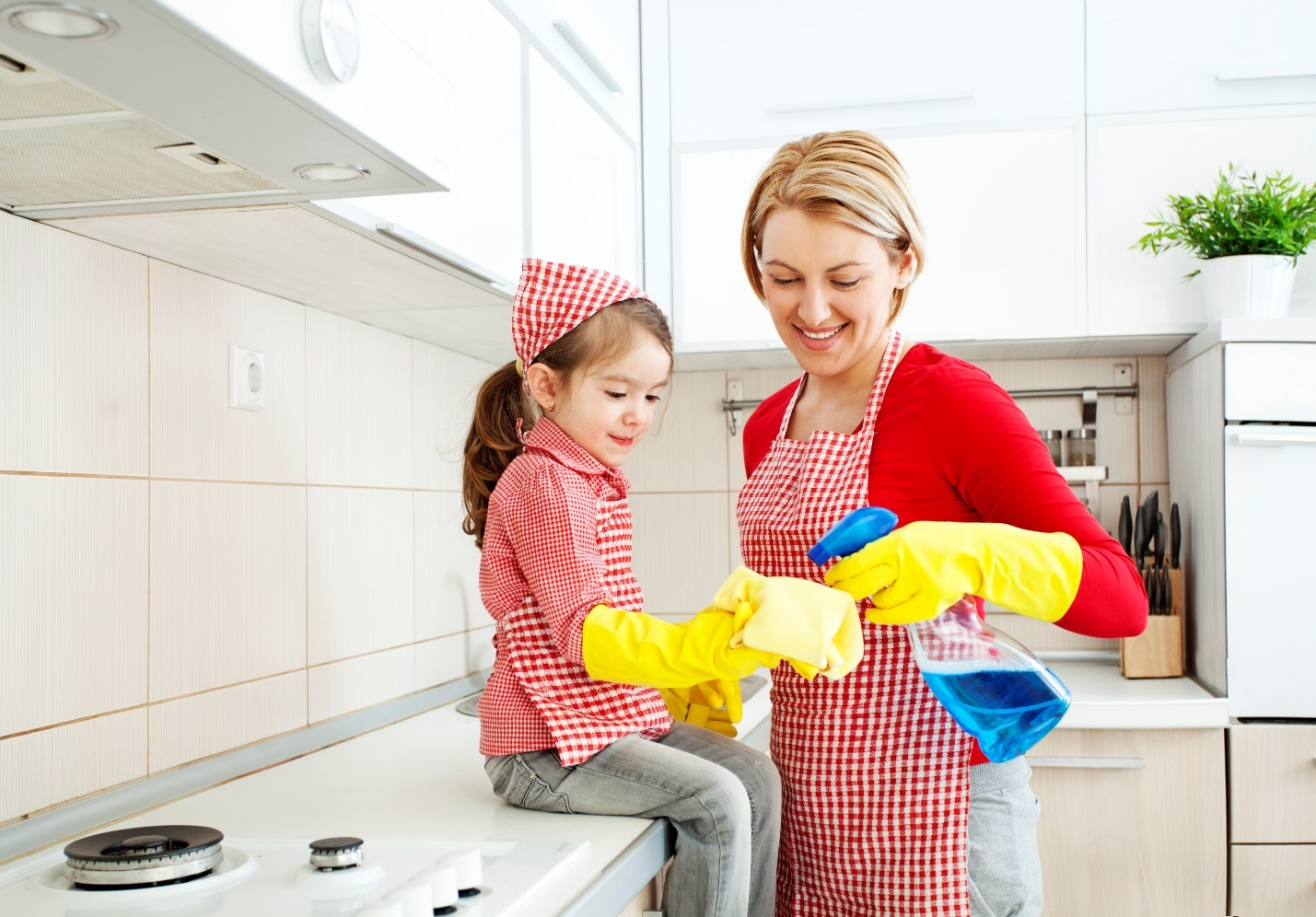 Home cleaning strategy and tips