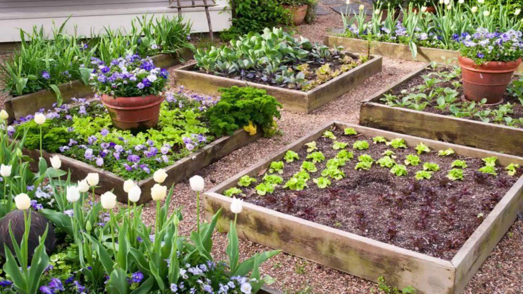 DIY Backyard Ideas to Landscape Backyard