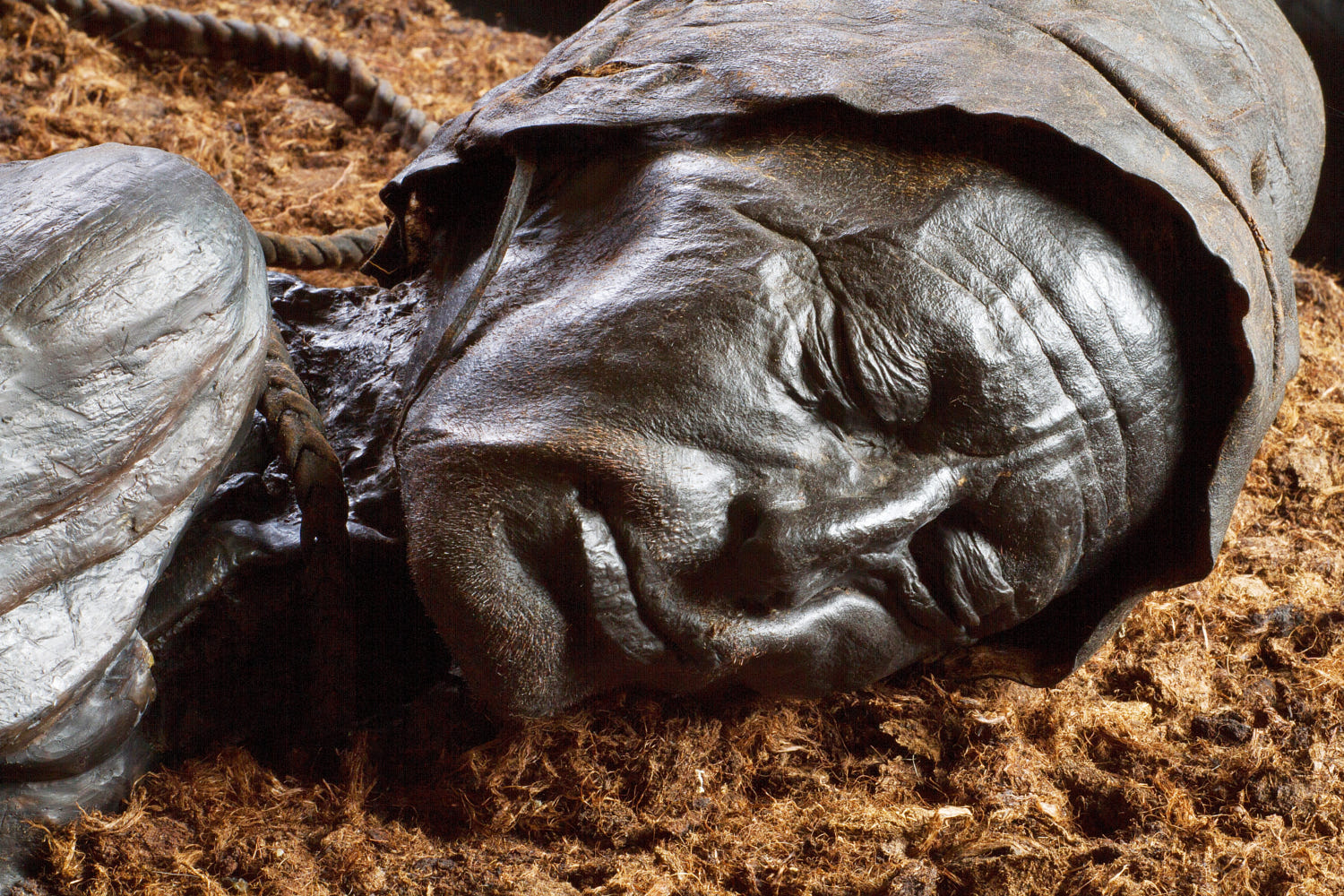 Tollund Man, One of the best preserved bodies in the world