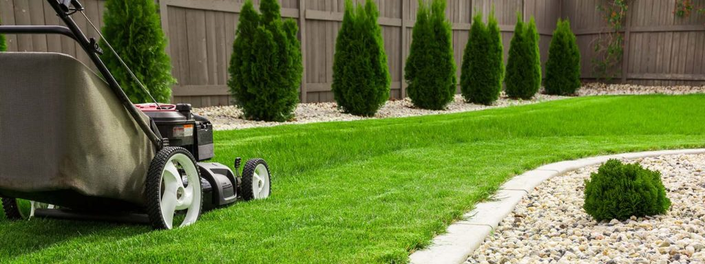 Lawn Care and Maintenance Practical Tips
